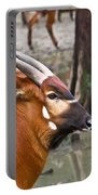 Nyala At The Watering Hole Portable Battery Charger