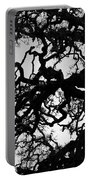 Oak Tree In Winter Detail - Amador County, California Portable Battery Charger