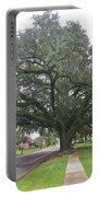 Oak  Tree  Jennings  Louisiana Portable Battery Charger
