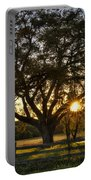 Oak Tree Sunset Portable Battery Charger