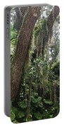 Oak Tree With Spanish Moss Portable Battery Charger