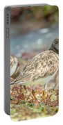 Ocean Plover Portable Battery Charger
