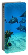 Ocean Striped Dolphins Portable Battery Charger