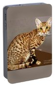 Ocicat Portable Battery Charger