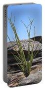 Ocotillo Of Desert Southwest Portable Battery Charger