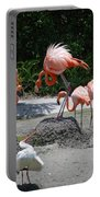 Odd Bird Out Portable Battery Charger