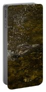 Of Fishes And Rainbows - Wild Salmon Run In The Creek Portable Battery Charger