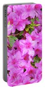 Office Art Azaleas Flower Art Prints 1 Azalea Flowers Giclee Baslee Troutman Portable Battery Charger