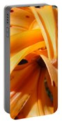 Office Art Floral Artwork Orange Tiger Lily Baslee Troutman Portable Battery Charger