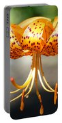 Office Art Master Garden Lily Flower Art Print Tiger Lily Baslee Troutman Portable Battery Charger