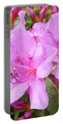 Office Art Pink Azalea Flower Garden 3 Giclee Art Prints Baslee Troutman Portable Battery Charger