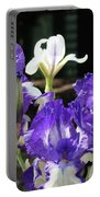 Office Art Prints Iris Flower Botanical Landscape 30 Giclee Prints Baslee Troutman Portable Battery Charger