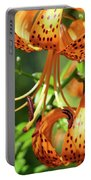 Office Art Prints Tiger Lilies Flowers Giclee Baslee Troutman Portable Battery Charger
