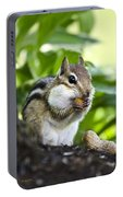 Oh Nuts Portable Battery Charger