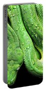 Oh So Green Viper Portable Battery Charger