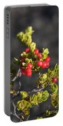 Ohelo Berries Portable Battery Charger