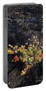 Ohia Lehua Portable Battery Charger