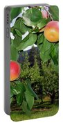 Okanagan Apricots Portable Battery Charger