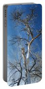 Old Barkless Tree Portable Battery Charger