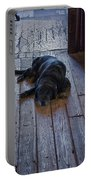 Old Dog Old Floor Portable Battery Charger