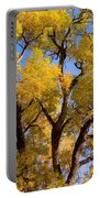 Old Giant  Autumn Cottonwood Portable Battery Charger