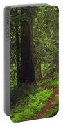 Old Growth Cedars Portable Battery Charger