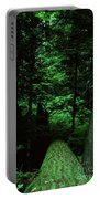 Old Growth Forest At Lost Lake On Mount Hood Portable Battery Charger