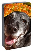 Old Labrador Portable Battery Charger