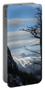 Old Larch Tree Has Best View Portable Battery Charger