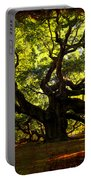 Old Old Angel Oak In Charleston Portable Battery Charger by Susanne Van Hulst
