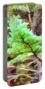 Old Pine Tree 1 Portable Battery Charger