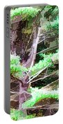 Old Pine Tree Portable Battery Charger