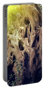 Old Sacred Olive Tree  Portable Battery Charger