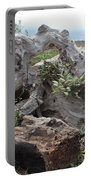 Old Stump At Gold Beach Oregon 4 Portable Battery Charger