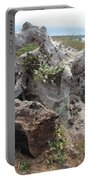 Old Stump At Gold Beach Oregon 5 Portable Battery Charger