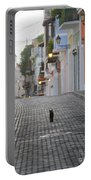 Old Town Alley Cat Portable Battery Charger