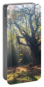 Old Tree And Sunbeams Portable Battery Charger