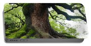 Old Tree In Kyoto Portable Battery Charger