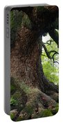 Old Tree In Kyoto Portable Battery Charger by Carol Groenen