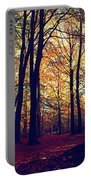 Old Tree Silhouette In Fall Woods Portable Battery Charger