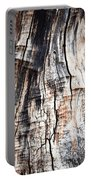 Old Tree Stump Tree Without Bark Portable Battery Charger