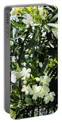 Oleander 2018 Portable Battery Charger