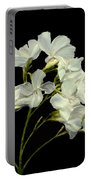 Oleander Portable Battery Charger