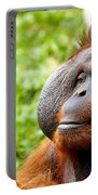 Ollie The Orangutang Portable Battery Charger