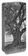 On The Delta Monochrome Portable Battery Charger
