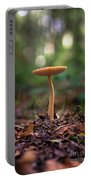 On The Forest Floor Portable Battery Charger