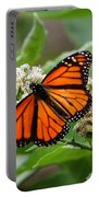 Once Upon A Butterfly 001 Portable Battery Charger