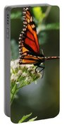 Once Upon A Butterfly 006 Portable Battery Charger