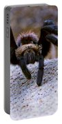 One Big Hairy Spider Portable Battery Charger