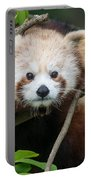 One Intense Critter Portable Battery Charger